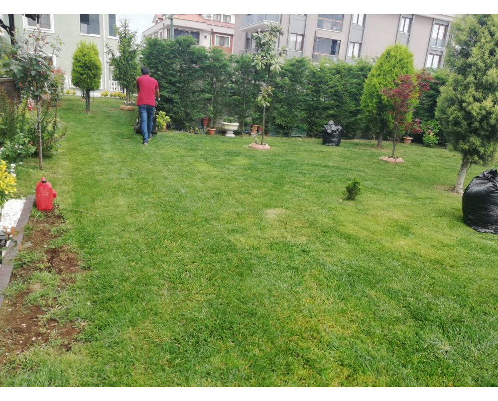 Sakarya Çim Biçme,Bahçe Bakımı ve Temizliği